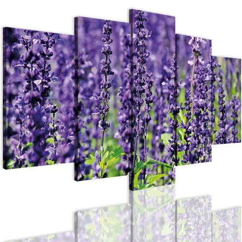 Obrazy 5 częściowe- Kwiaty, lawenda 12322 - 1