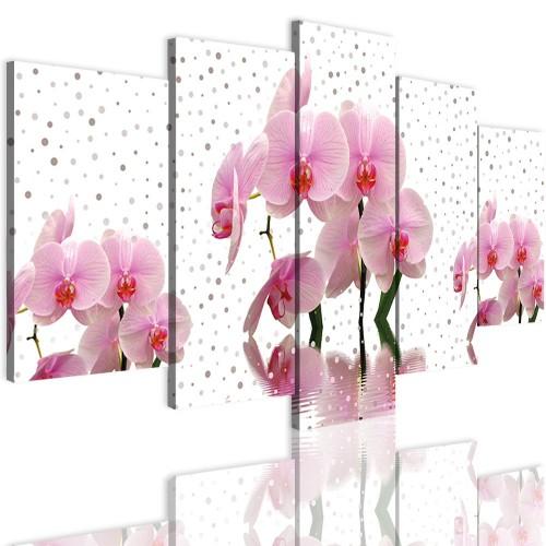 Obrazy 5 częściowe- Kwiaty, storczyki 12323 - 1