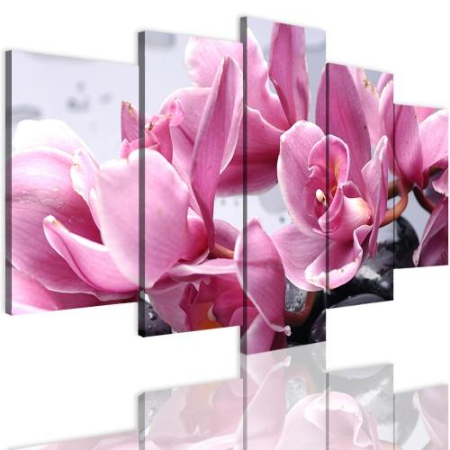 Obrazy 5 częściowe-  Orchidea, storczyk, zen 12288 - 1