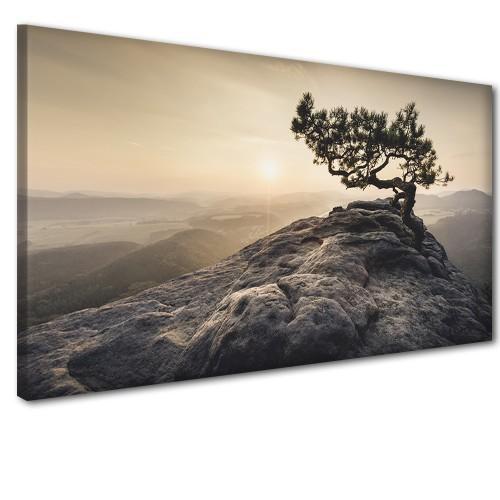 Obraz na ścianę do sypialni salonu samotne drzewo 41230 - 1