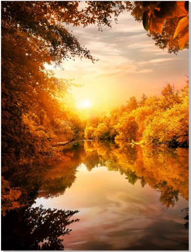 Plakat Złota jesień nad wodą 61138 - 1