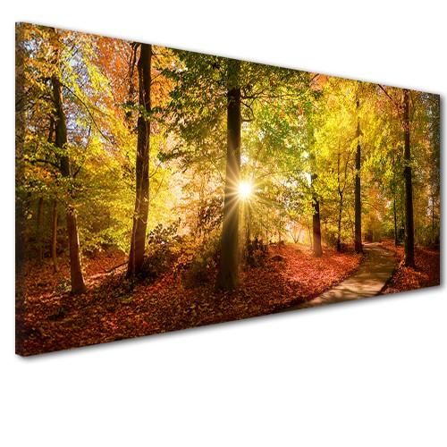 Obraz na ścianę do sypialni salonu złota jesień w lesie  41238 - 1