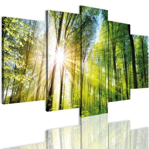 Obrazy 5 częściowe- Las, pejzaż, słońce 12349 - 1