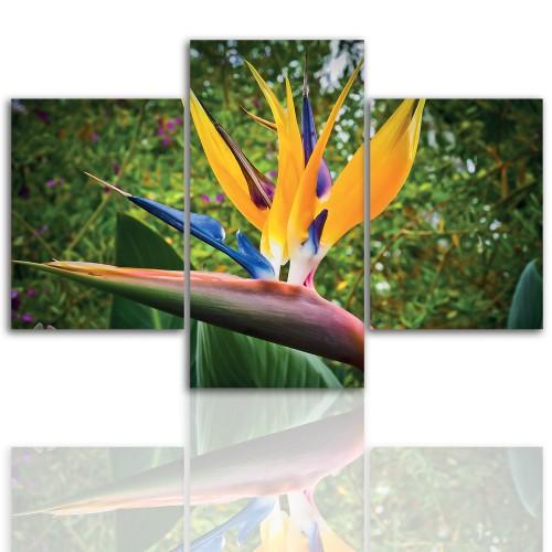 Tryptyk do salonu - Kwiaty, roślina, pąk 12044 - 1