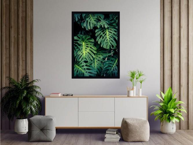 Plakat Tropikalne rośliny, monstera 61137 - 1