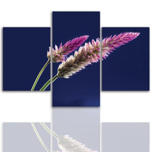 Tryptyk do salonu - Kwiaty, roślina, kłos 12045 - 1