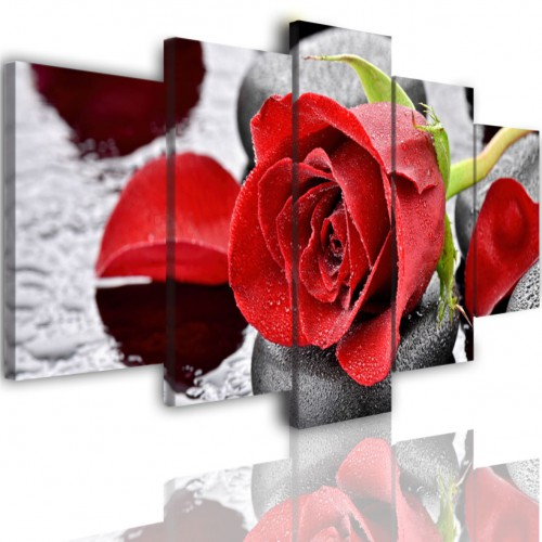Obrazy 5 częściowe- Kwiat róże czerwone 513 - 1