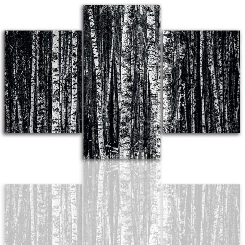 Tryptyk do salonu - Drzewa, brzozy 12214 - 1