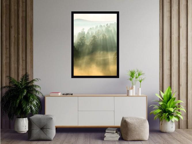 Plakat Las w promieniach słońca 61105 - 1