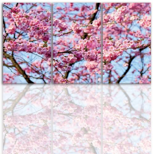 Tryptyk do salonu - Kwiaty wiśni, 12215 - 1