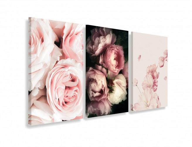 Obrazy na ścianę do salonu sypialni 19014  piwonie różowe - 1