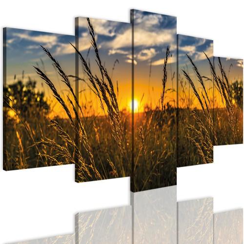 Obrazy 5 częściowe- Pole 12328 - 1