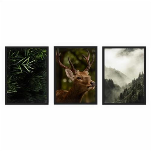 Komplet trzech plakatów w ramie leśne widoki KP099 - 1