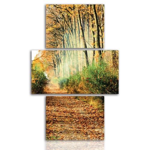 Tryptyk do salonu - Pejzaż, las, droga 12136 - 1