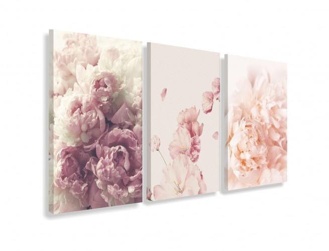 Obrazy na ścianę do salonu sypialni 19012 kwiaty piwonie - 1