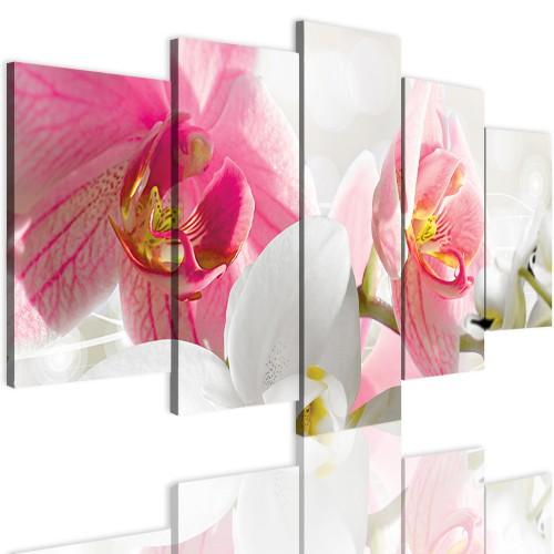 Obrazy 5 częściowe- Storczyk, orchidea, zen 12297 - 1