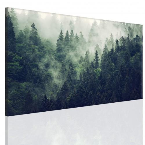 Obraz na ramie płótno canvas- pejzaż, góry, las 15074 - 1
