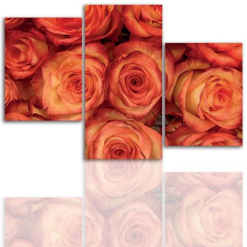 Tryptyk do salonu - Kwiaty, róże, pąk 12110 - 1