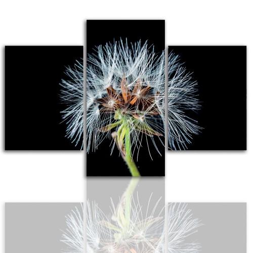 Tryptyk do salonu - Kwiaty, roślina, dmuchawiec 12055 - 1