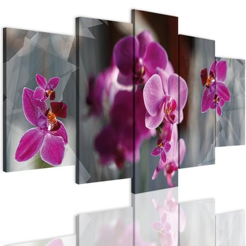 Obrazy 5 częściowe- Kwiaty, storczyki 12306 - 1