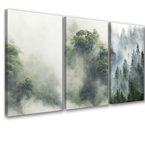 Obraz na ścianę do salonu  sypialni 41256 las we mgle - 1