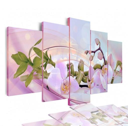 Obrazy 5 częściowe- Kwiaty, orchidea, storczyk 12996 - 1