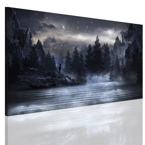 Obrazy na ścianę 41098 nieziemski widok - 1