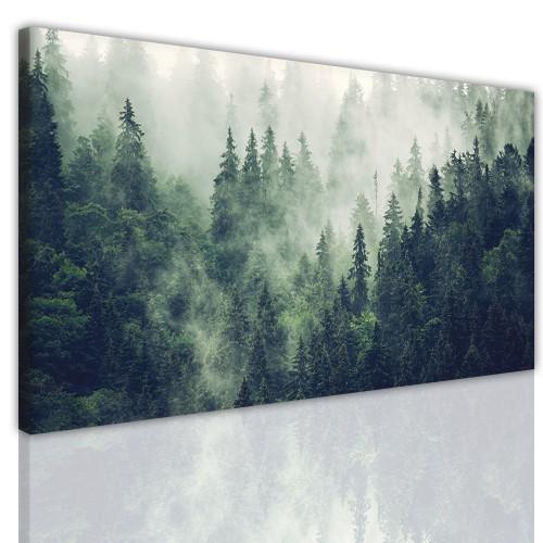 Obraz jednoczęściowy ścienny  15177 las w mgle - 1