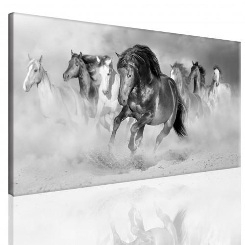 Obraz na ramie płótno canvas- pejzaż, konie, galop 15075 - 1