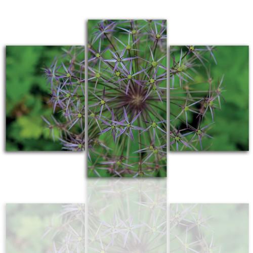 Tryptyk do salonu -  Kwiaty, roślina, dmuchawiec 12065 - 1