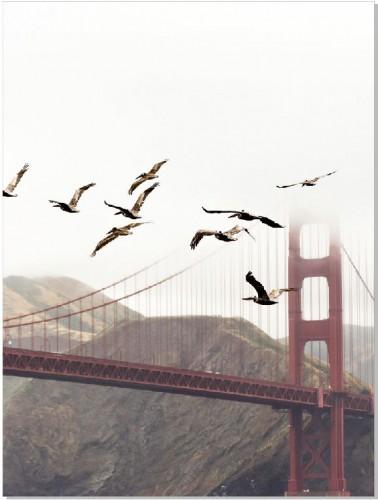 Plakat Golden Gate 61190 - 1