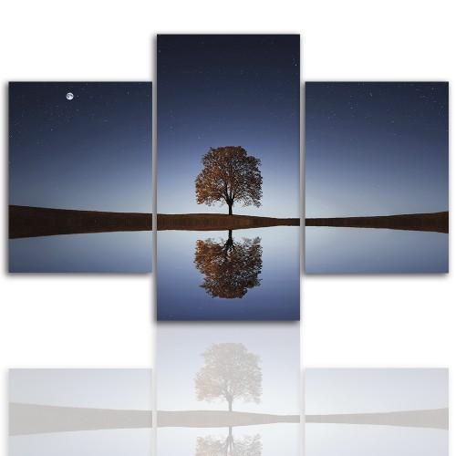Tryptyk do salonu -  Pejzaż, drzewo, zmrok 12277 - 1