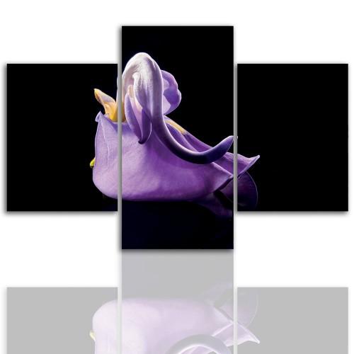 Tryptyk do salonu - Kwiaty, roślina, narcyz 12046 - 1