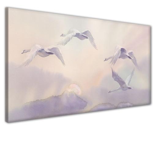 Obraz na ścianę do sypialni salonu niebo ptaki 41362 - 1
