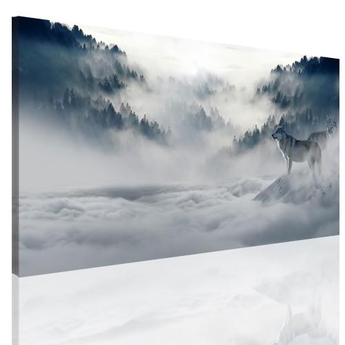 Obrazy na ramie płótno canvas 15208 las, wilki, mgła - 1