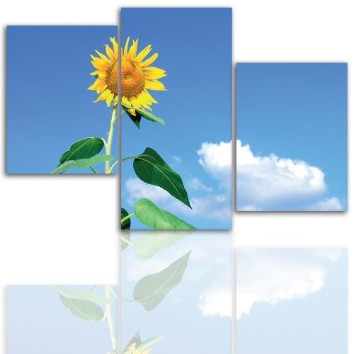 Tryptyk do salonu - Kwiaty, słonecznik, niebo 12116 - 1
