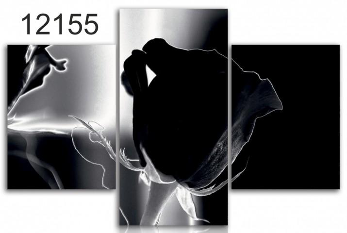 Tryptyk do salonu - Kwiaty, róża, czarno-biała 12155 - 1