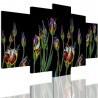 Obrazy 5 częściowe- Kwiaty 12320 - 1