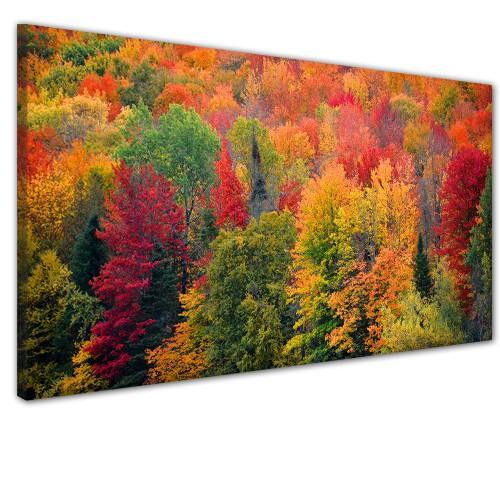 Obraz na ścianę do sypialni salonu jesień w lesie  41316 - 1