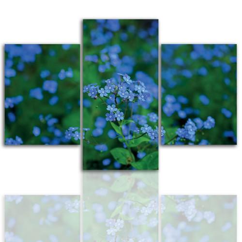 Tryptyk do salonu - Kwiaty, roślina 12073 - 1