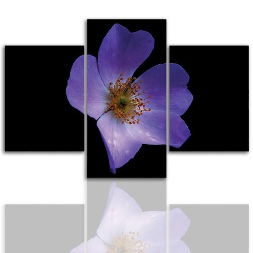Tryptyk do salonu - Kwiaty, roślina, pąk 12063 - 1