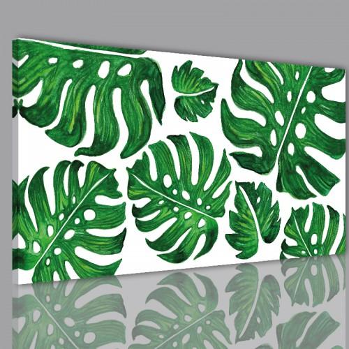 Obraz na ramie płótno canvas- Liście monstera monster kwiaty 10415 - 1