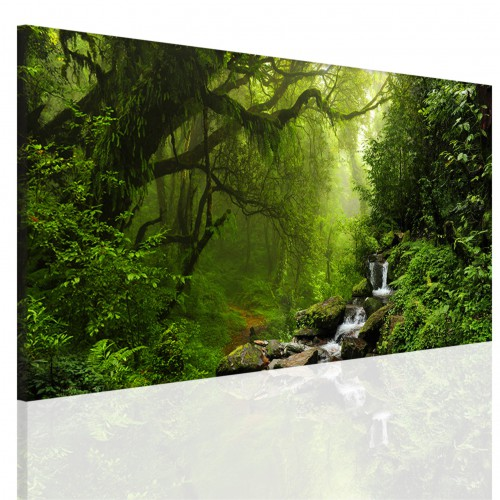 Obraz na ramie płótno canvas- pejzaż, las, wodospad 15093 - 1